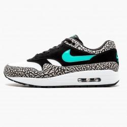 Nike Air Max 1 Atmos Elephant 858876 013 Unisex Running Shoes
