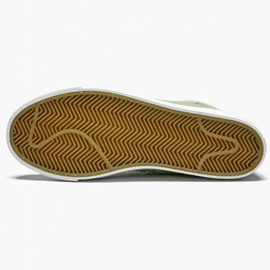 Nike SB Blazer Frog Skateboards AH6158 300 Unisex Casual Shoes