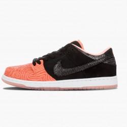 Nike Dunk SB Low Premier Fish Ladder 313170 603 Unisex Casual Shoes