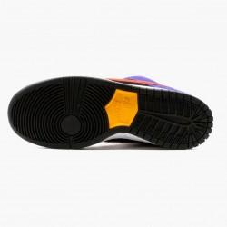 Nike SB Dunk Low ACG Terra BQ6817 008 Unisex Casual Shoes